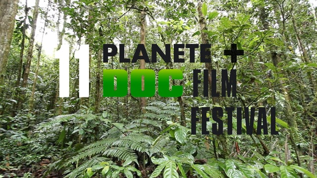 Logo festiwalu Planete + Doc