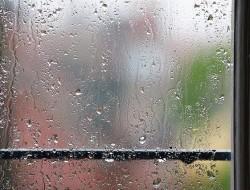 Zmysłoteka - Deszczowo