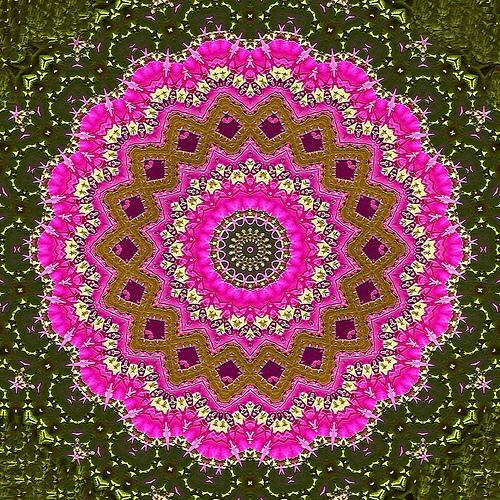 Kaleidoscope Ch84 de Venus Oak - by Lucy Nieto @Flickr