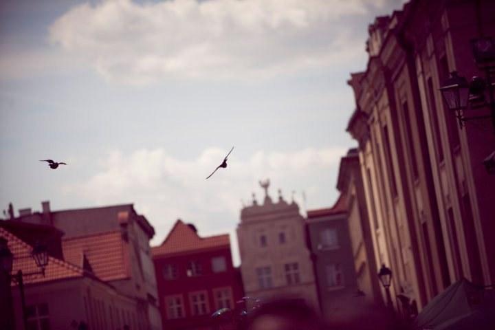 zdjęcie Starówki