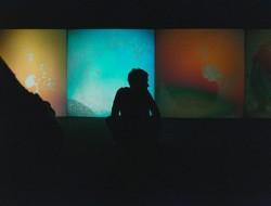 Gustav Metzger, przestrzeń wystawy