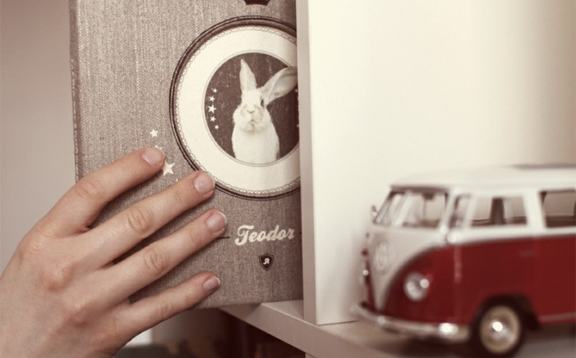 Teodor - zdjęcie książki